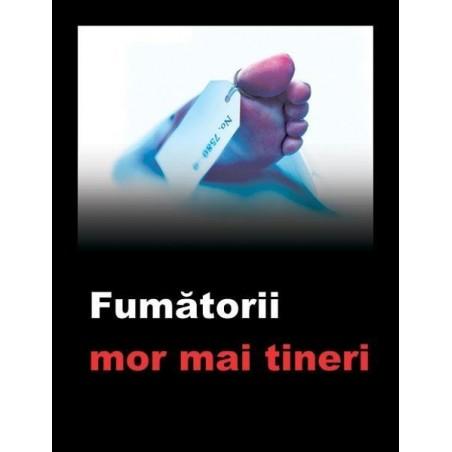 Trabucuri Montecristo Petit Edmundo Tubos 3