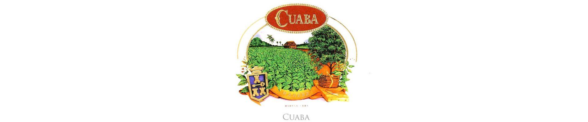 Trabucuri Cuaba trabucuri cubaneze Cuaba trabuc cubanez.Magazin trabuc