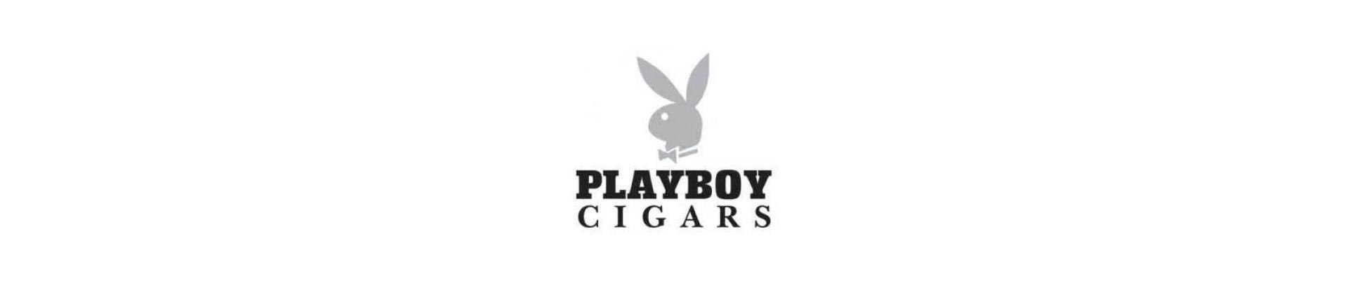 Trabucuri Playboy Trabucuri Playboy Robusto pret trabucuri.