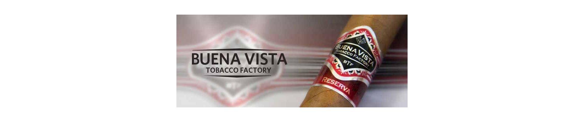 Magazin online cu trabucuri dominicane Buena Vista de vanzare.